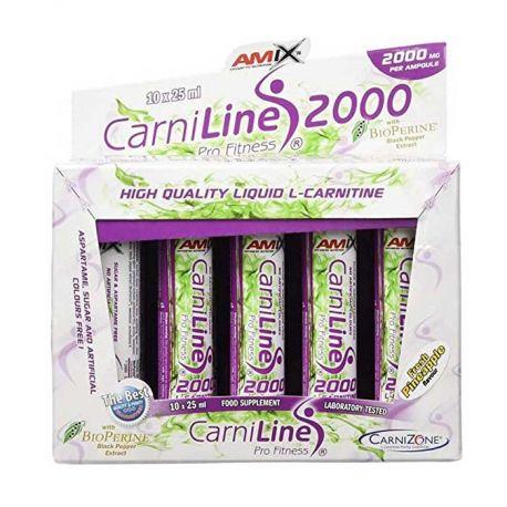 AMIX CARNILINE 2000 PROFITNESS 10X25 ML