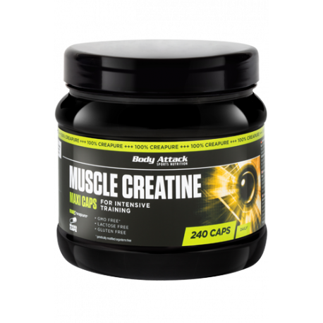 BODY ATTACK MUSCLE CREATINE 240 MAXI CAPS