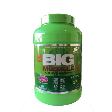 IRON SUPPLEMENTS BIG MUSCLE 3KG