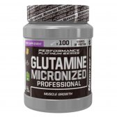 NUTRYTEC PERFORMANCE PLATINUM GLUTAMINA MICRONIZED 500 GR