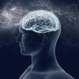 Puede el ejercicio fortalecer la mente?