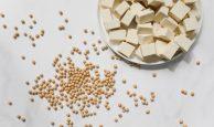 2-5-194x115 La proteína de soja