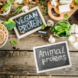 Las diferencias entre la proteína vegana y de leche