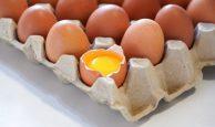 1-1-194x115 Proteína de huevo: propiedades y beneficios