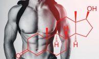 2-194x115 ¿Cómo aumentar la testosterona de manera natural?