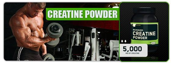 micronized creatine powder